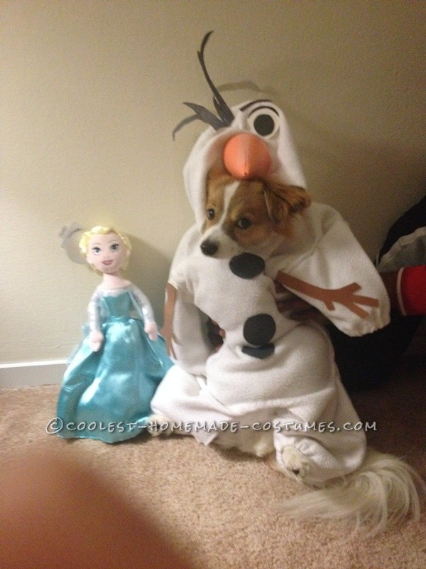 Funny Dog Costume: Mochi  as Olaf from Frozen - 1