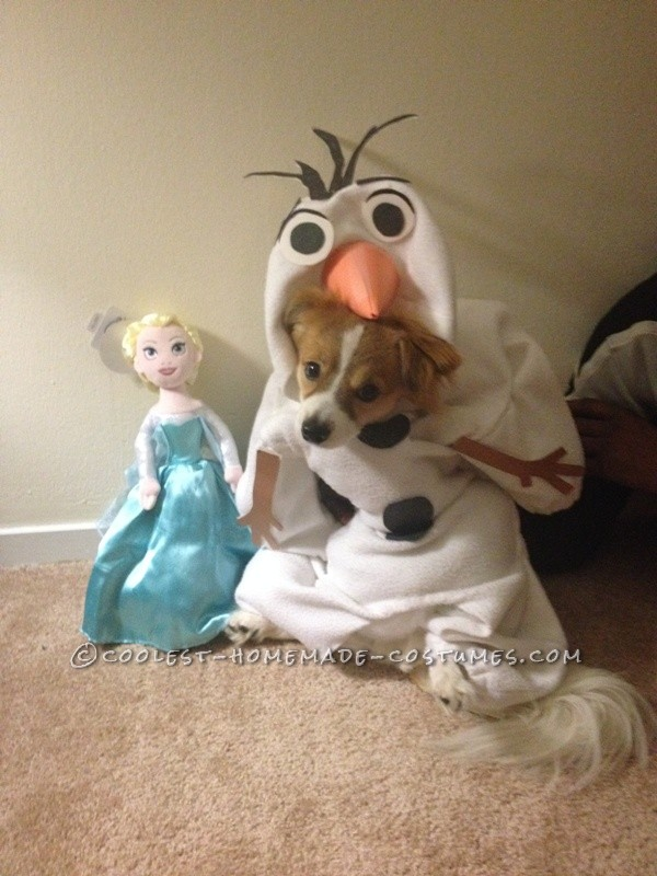 Funny Dog Costume: Mochi  as Olaf from Frozen - 4