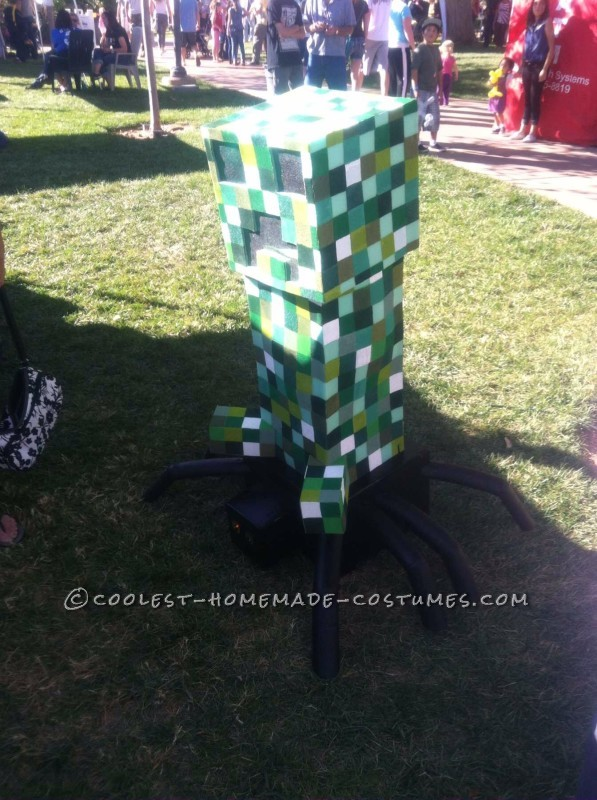 Most Amazing DIY Minecraft Costume for a Boy - 5