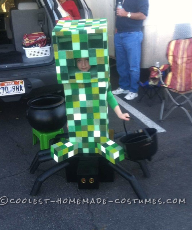 Most Amazing DIY Minecraft Costume for a Boy