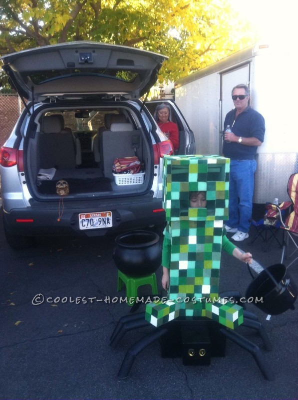 Most Amazing DIY Minecraft Costume for a Boy - 3