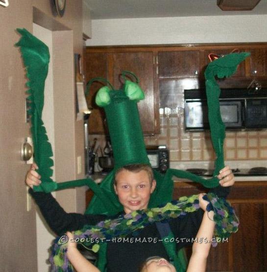 Cool Praying Mantis Costume