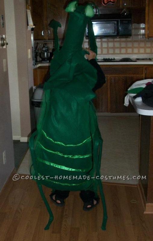 Cool Praying Mantis Costume - 1