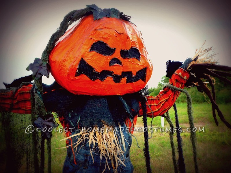 Coolest Pumpkin Patch Scarecrow Costume - 2
