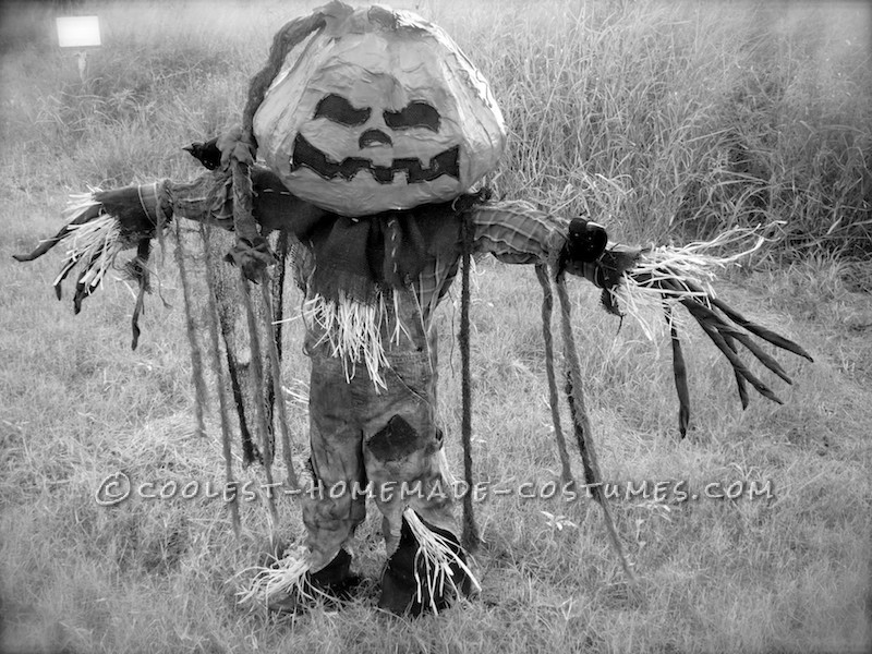 Coolest Pumpkin Patch Scarecrow Costume - 3