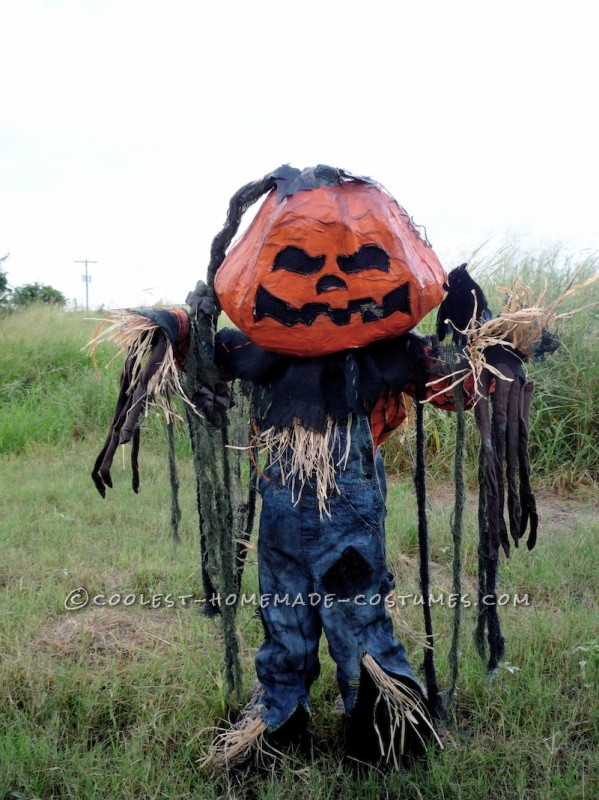 Coolest Pumpkin Patch Scarecrow Costume - 4