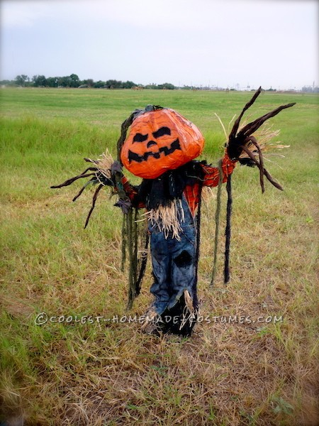 Coolest Pumpkin Patch Scarecrow Costume - 5