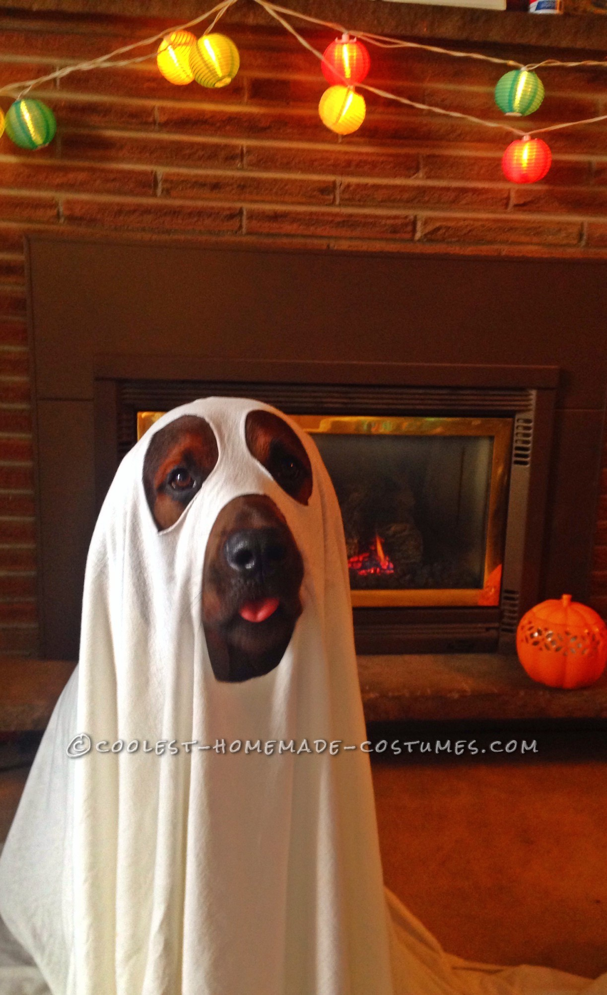 Cool Dog Halloween Costume: Puppy Ghost