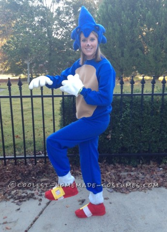 Sonic the Hedgehog Costume for Fun Adults