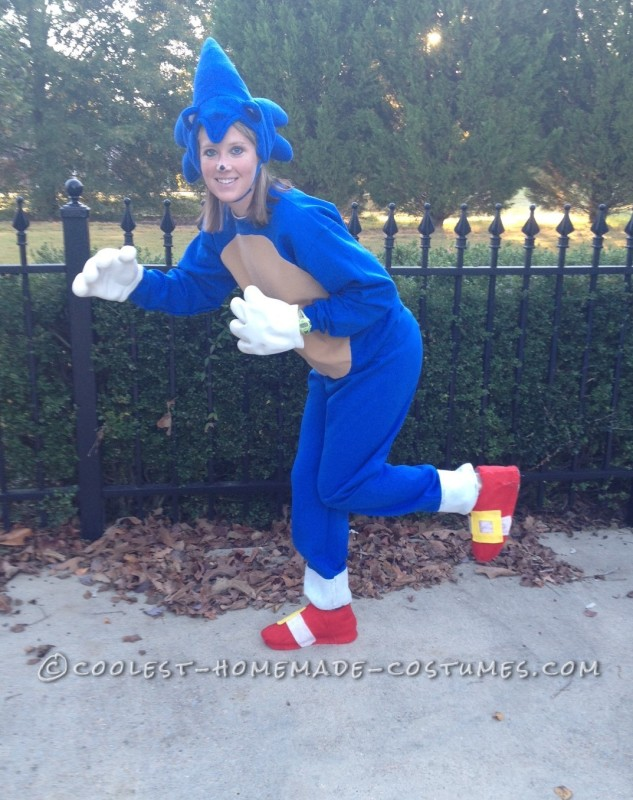 Sonic the Hedgehog Pose 1