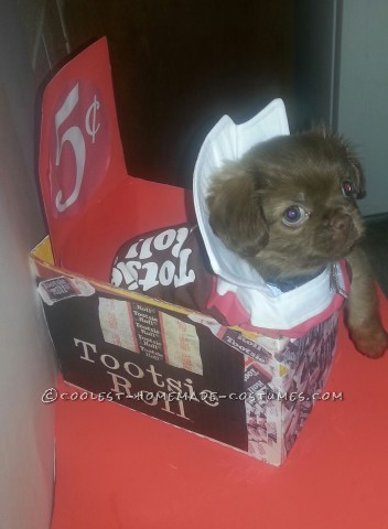 Sweet Chocolate Peekapoo Tootsie Roll Costume