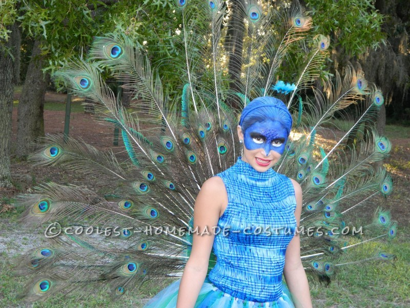 The Most Beautiful Peacock Costume - 7