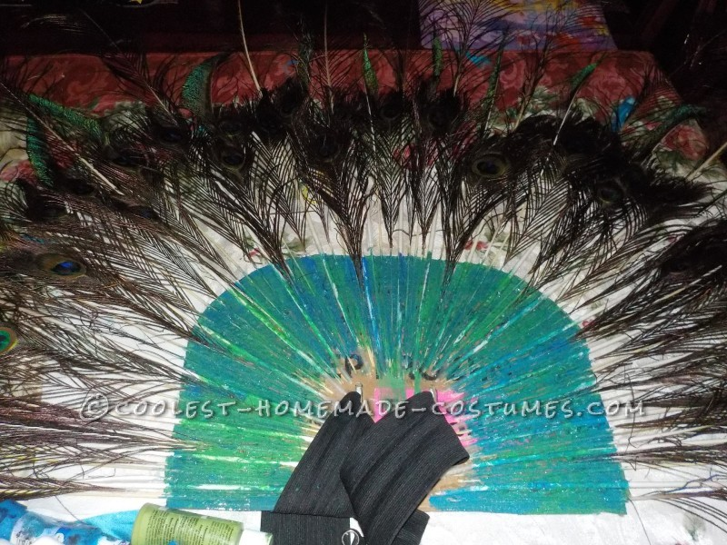 The Most Beautiful Peacock Costume - 5