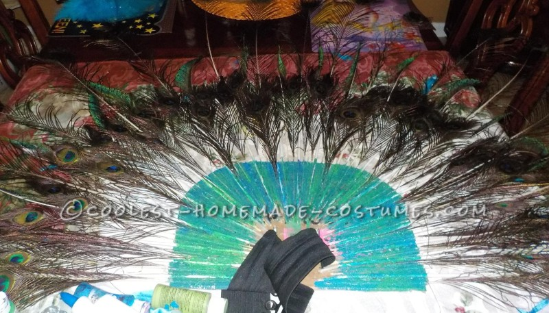 The Most Beautiful Peacock Costume - 4