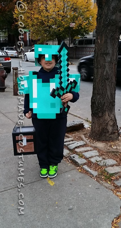 Awesome Minecraft Costume for a Boy