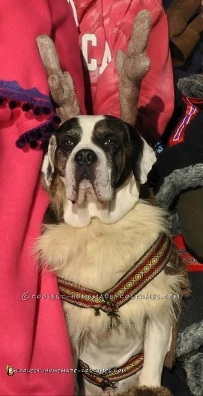 Family Dog Sven Costume
