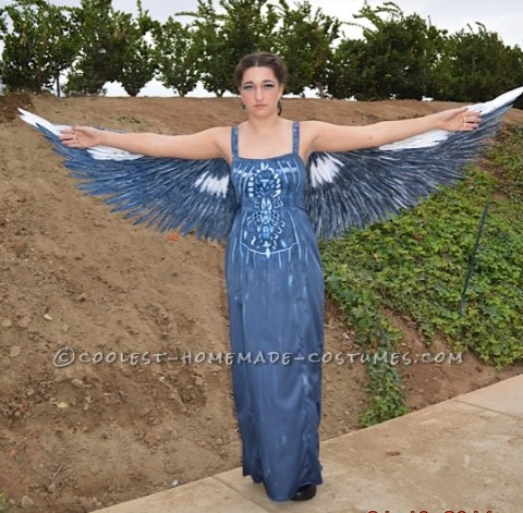 Amazing 15 Year Old Mockingjay Hunger Game Costume