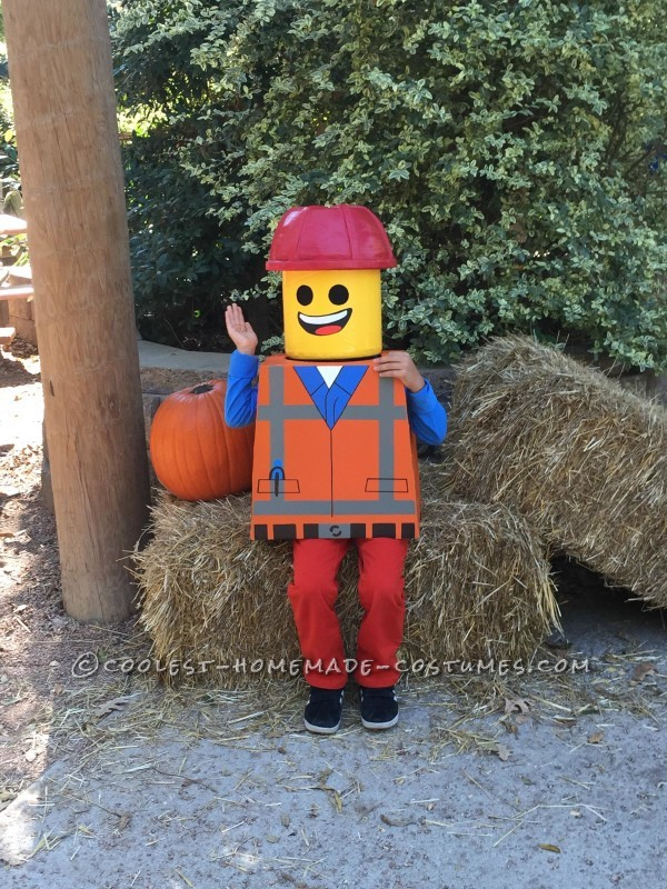 Amazing Family Themed Lego Movie Costumes! - 4