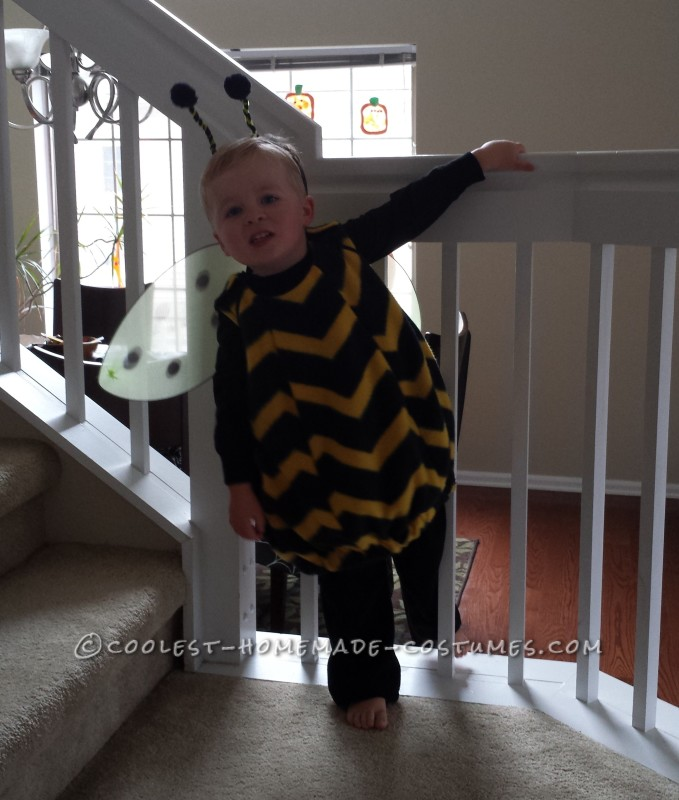Cute Bee-Themed Family Costume - 2