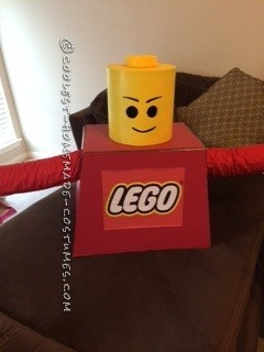 Best Costume for a Lego Master Builder