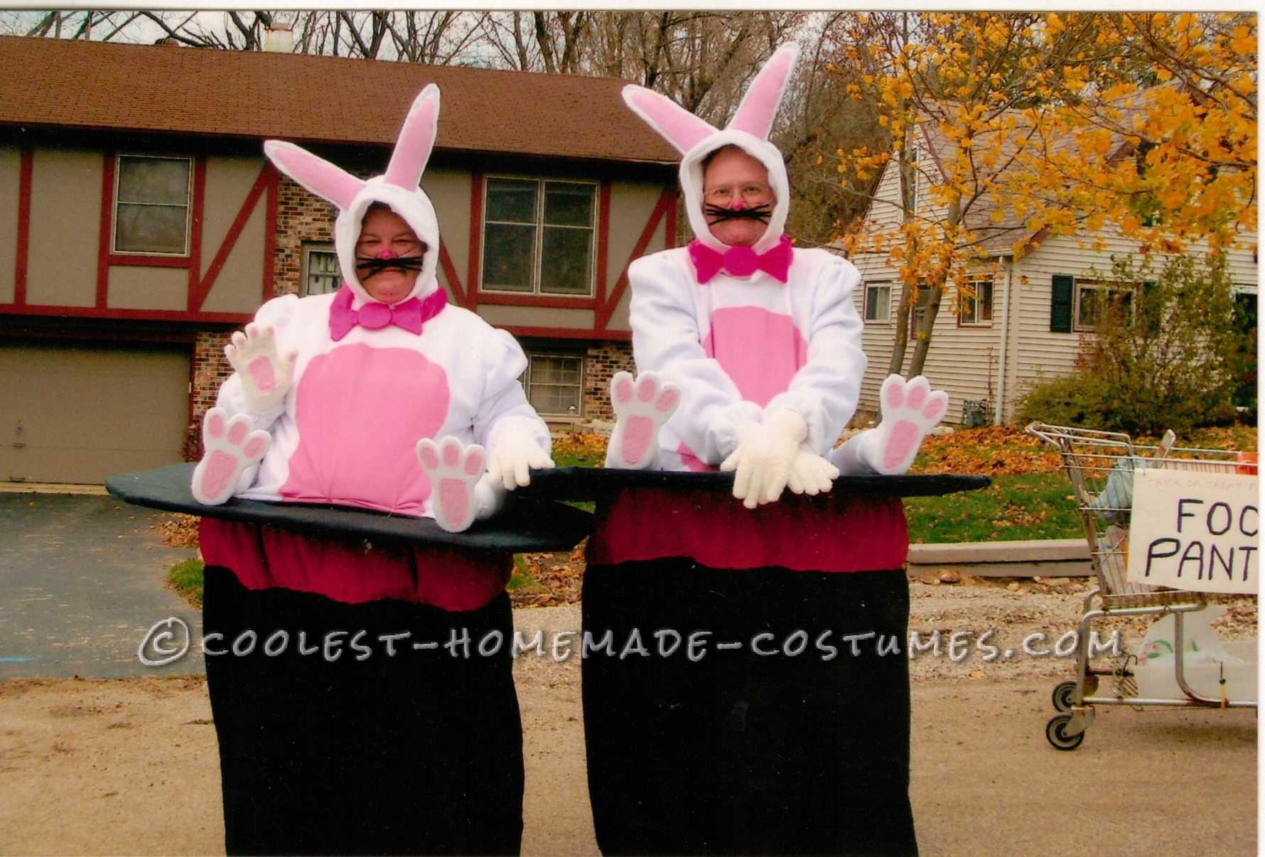 Optical Illusion Bunny in Magician Hat Costumes