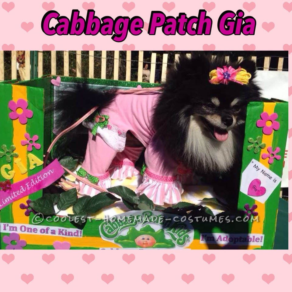 Cabbage Patch Dog Costume for a Cute Pomeranian
