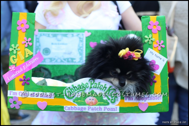 Cabbage Patch Dog Costume for a Cute Pomeranian - 2