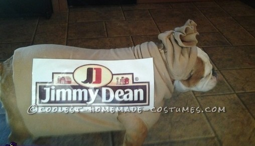 Coolest DIY Breakfast Family Costume With Our Dog!