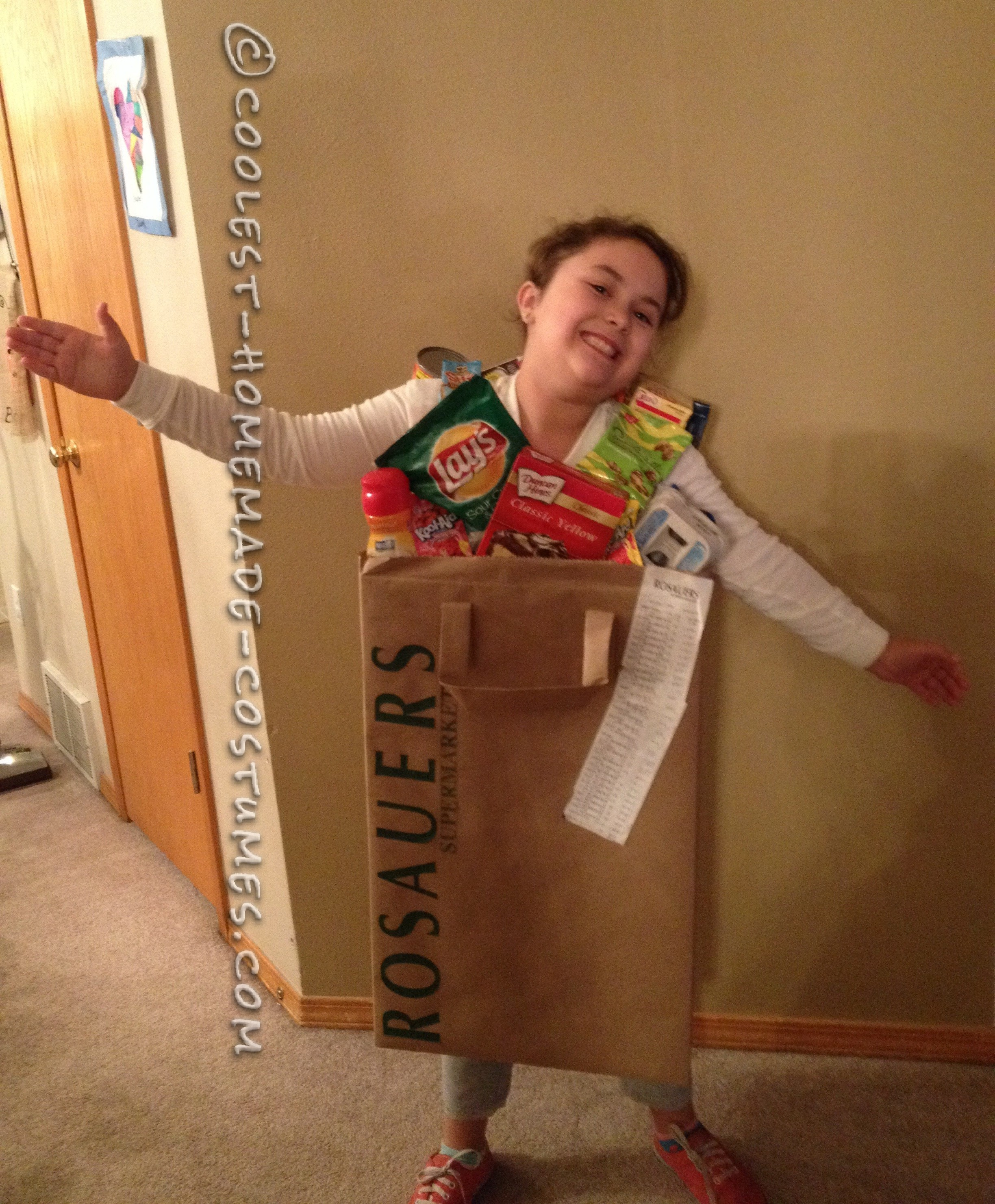 Coolest Grocery Bag Costume