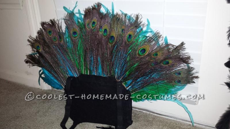 Dazzling Pretty Peacock Halloween Costume