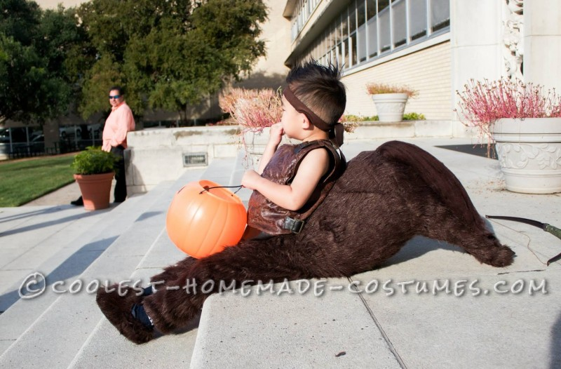 Super Cool DIY Centaur Costume - 1