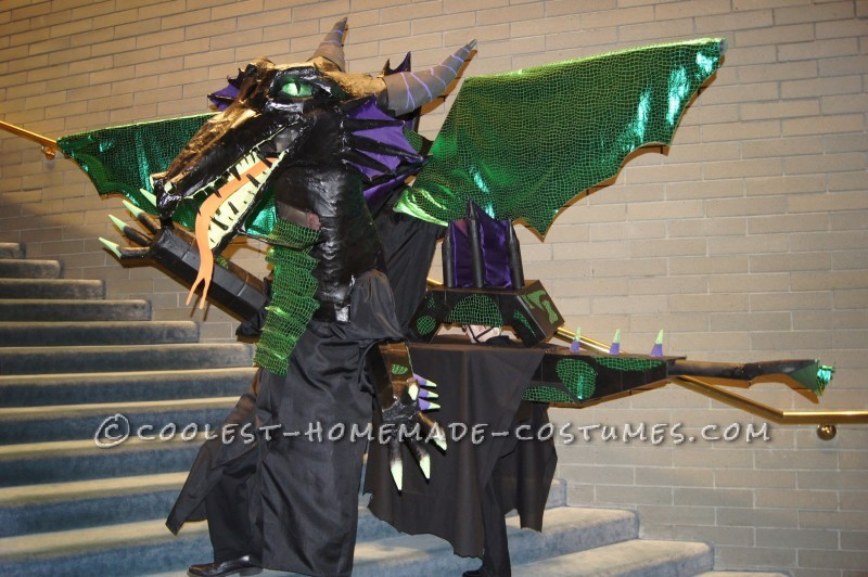 Dramatic Dragon Group Costume - 1