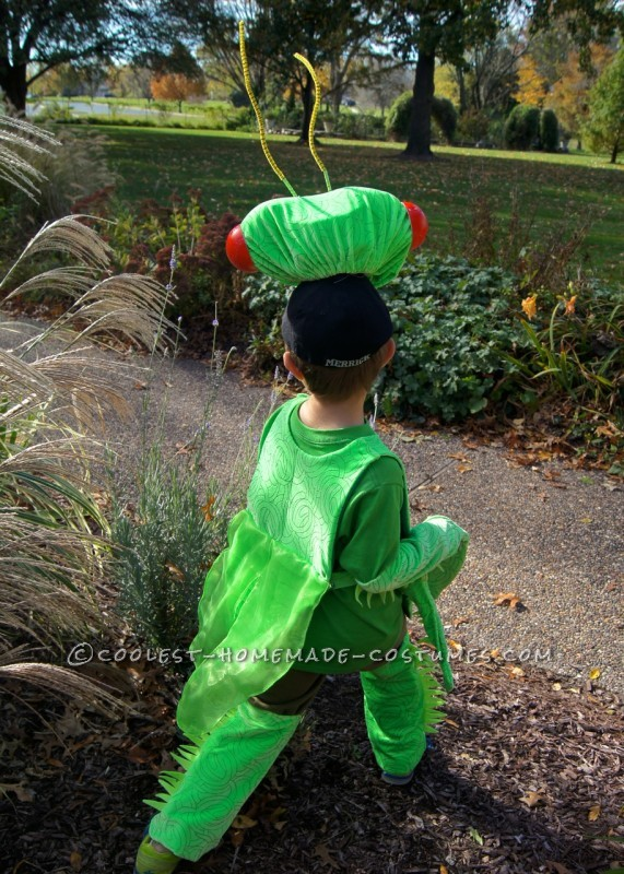 12 Month Halloween Costumes Boy
