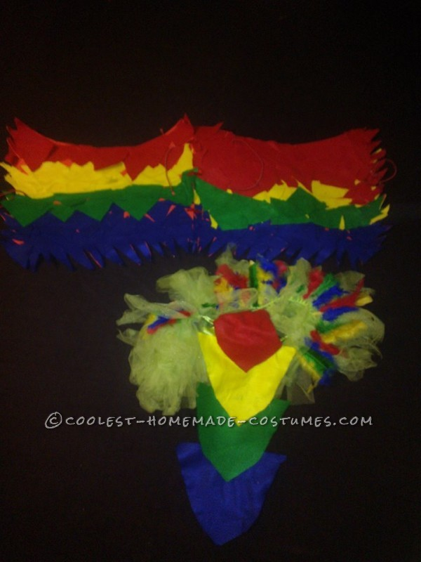 Funniest Female Parrot Costume - 1