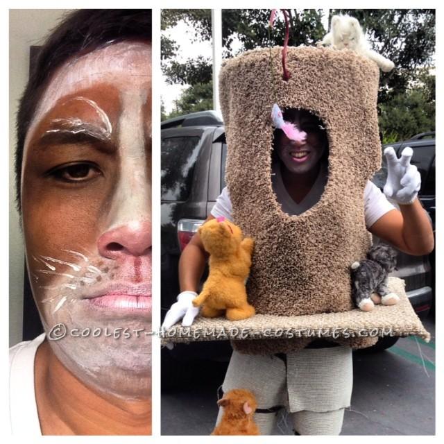 Original Grumpy Cat in his Condo Costume
