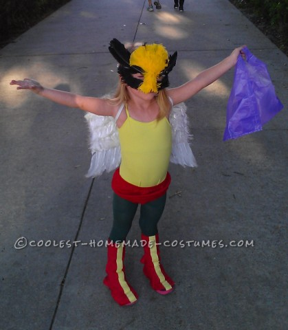 Coolest Homemade Hawk Girl Costume