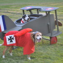 High Flying Snoopy Versus The Red Baron Pet Dog Costumes