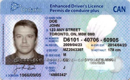 Driver's Licence Costume for a High Maintenance Kid!
