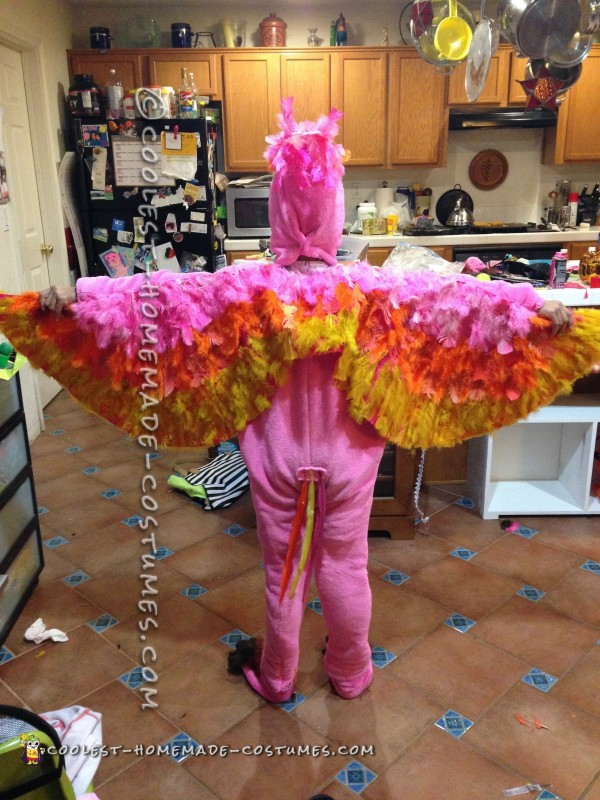 Back of costume and tail feathers