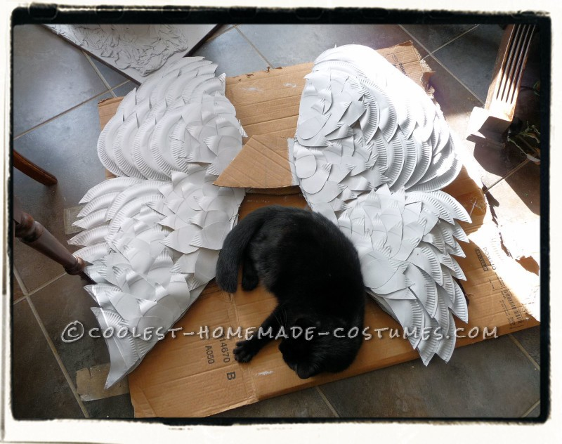 Geno posing with the angel wings