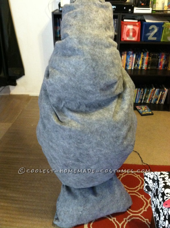 The back of the manatee
