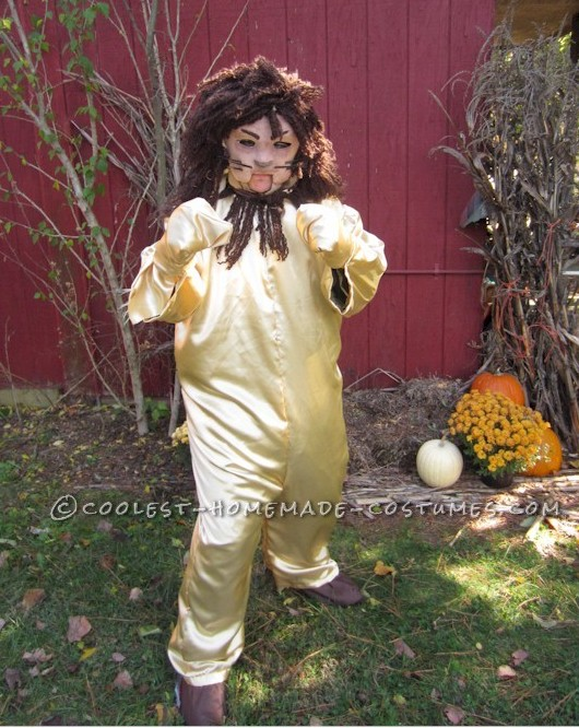 original homemade layer by layer wizard of oz costume lion scarecrow dorothy and the tinman