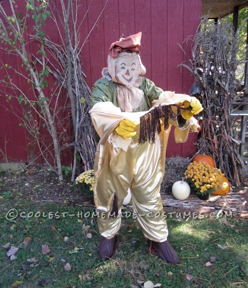 Lion to Scarecrow