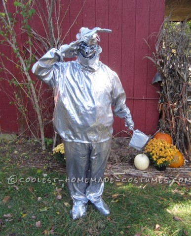 Original Homemade Layer by Layer Wizard of Oz Costume (Lion, Scarecrow, Dorothy and the Tinman)