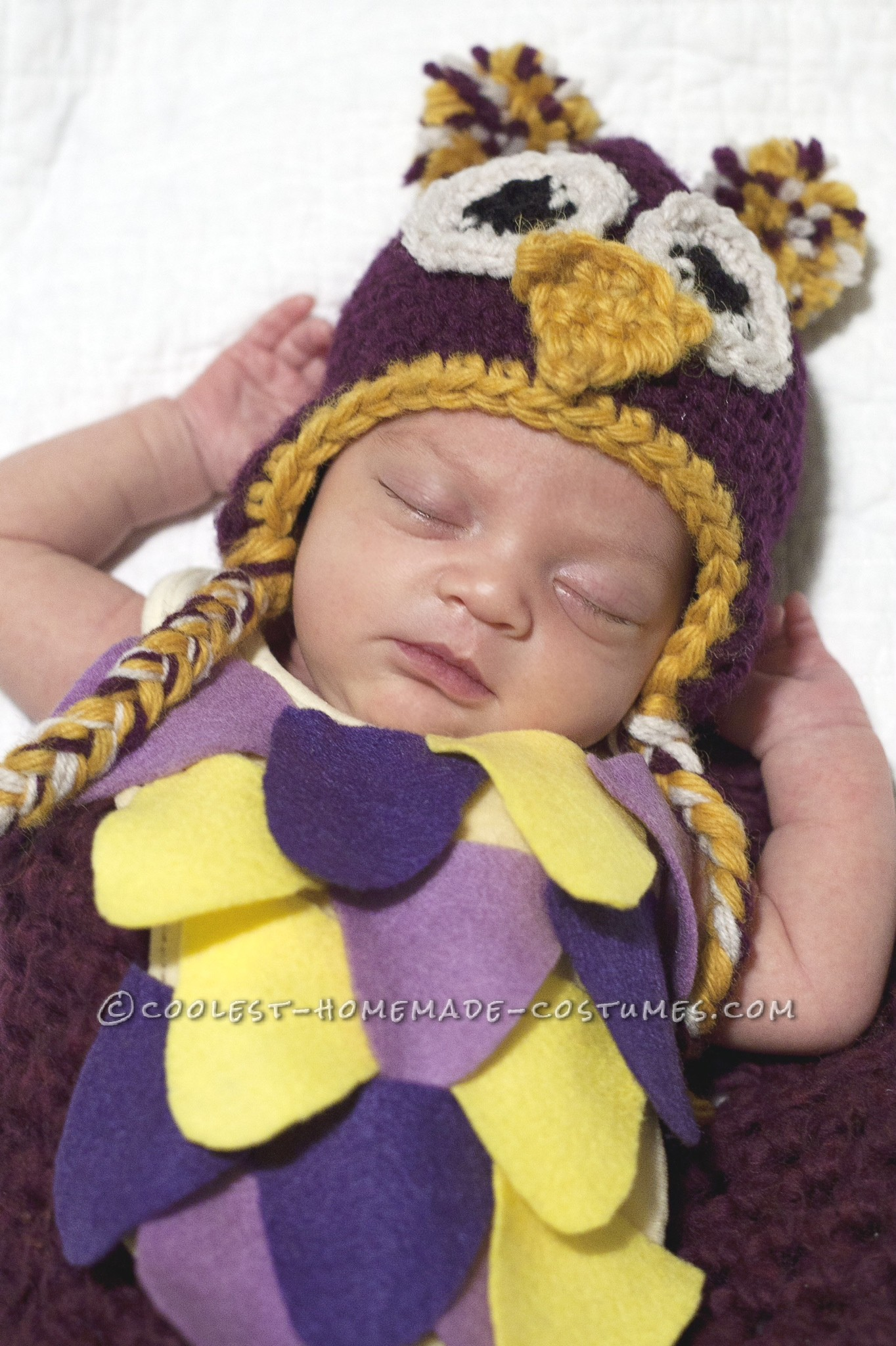 Cute Newborn Sleepy Owl Costume
