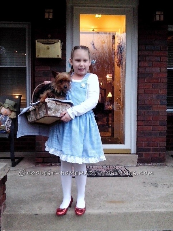 Coolest Homemade Wizard of Oz Girl's Costumes - 1