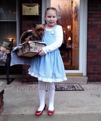 Coolest Homemade Wizard of Oz Girl's Costumes