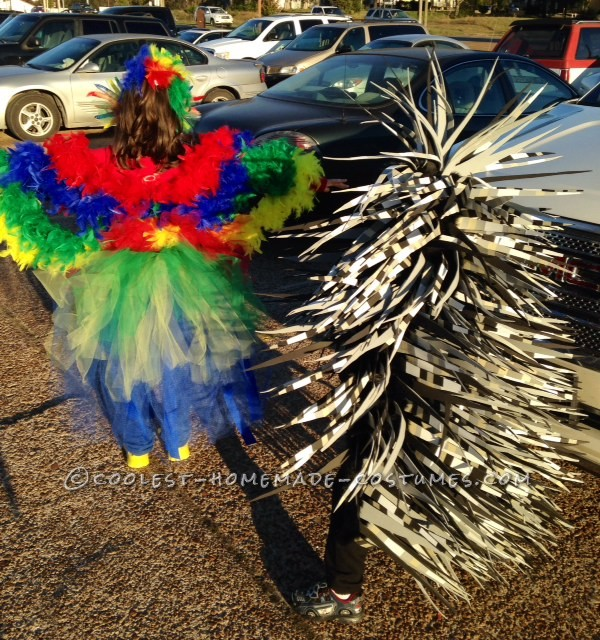 Coolest Parrot and Porcupine Costumes - 6