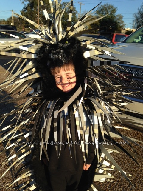 Coolest Parrot and Porcupine Costumes - 2