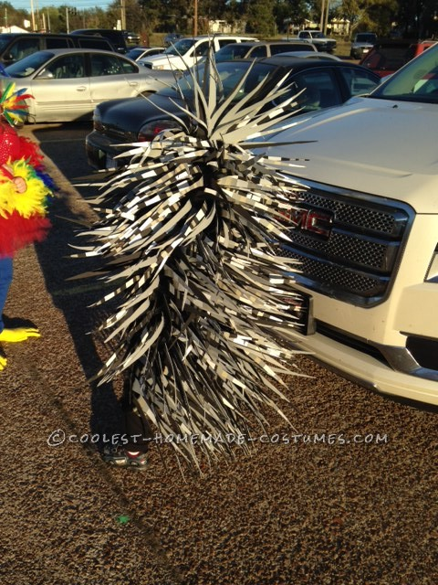 Coolest Parrot and Porcupine Costumes - 7